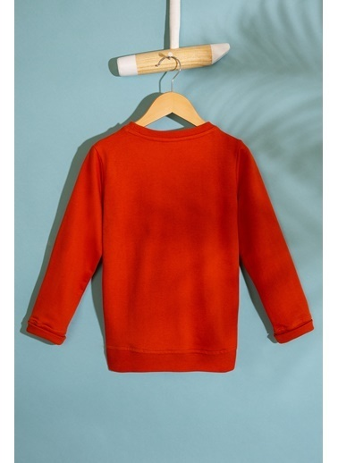 U.S. Polo Assn. Sweatshirt Oranj